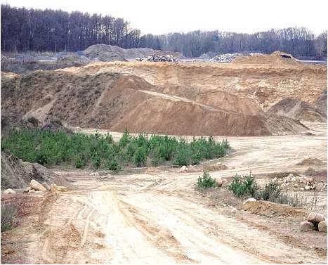 Die Freimuth-Sandgrube in Driftsethe- Weißenberg in der eine Bauschutt-Deponie entstehen soll, die mehr als 30 Meter hoch werden soll. Foto: Bär