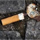 Ausgetretene Zigarette: Aus jedem Stummel können zwei Milligramm Nikotin in den Boden gespült werden.  (dpa/picture alliance/Martin Gerten)